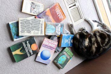 Pazuzu sleeping on my books
