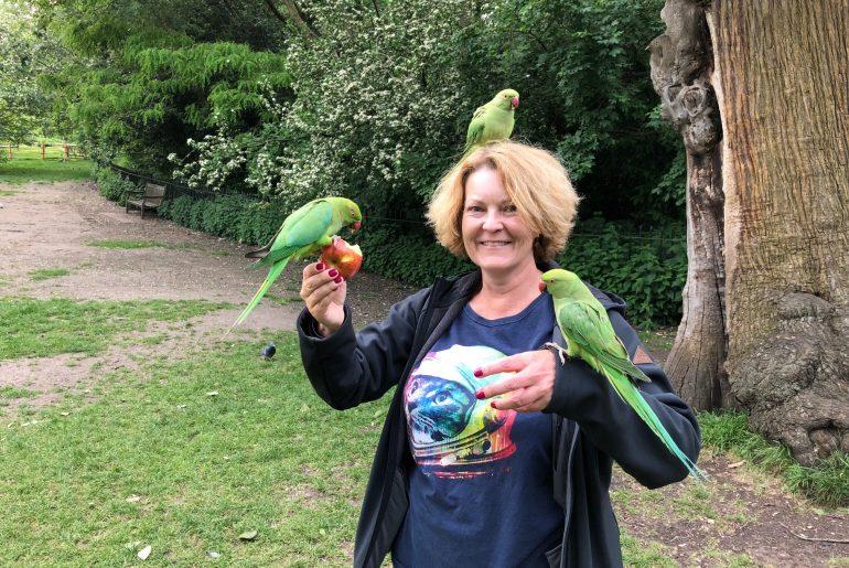 Kensington bird